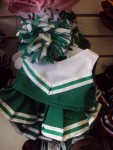 Green and White Cheer Uniform