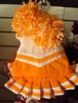 Orange and White Cheer Uniform