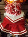 Red and White Cheer Uniform