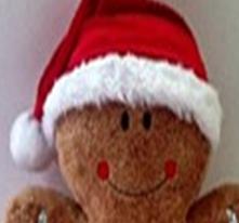 Red Santa Hat-